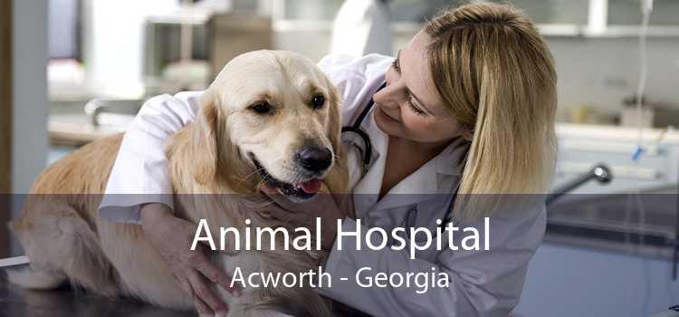 Animal Hospital Acworth - Georgia
