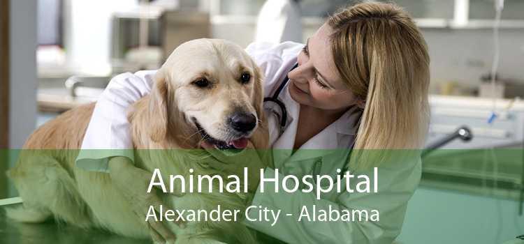 Animal Hospital Alexander City - Alabama
