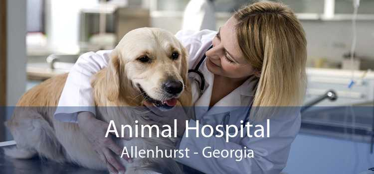 Animal Hospital Allenhurst - Georgia