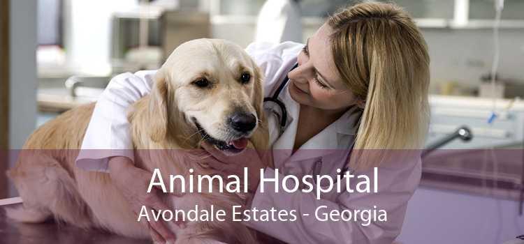 Animal Hospital Avondale Estates - Georgia