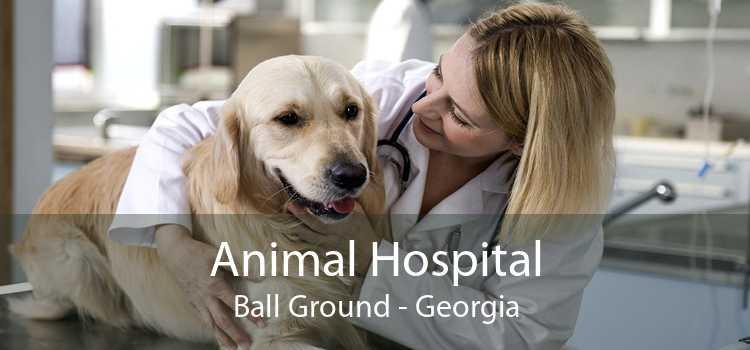 Animal Hospital Ball Ground - Georgia