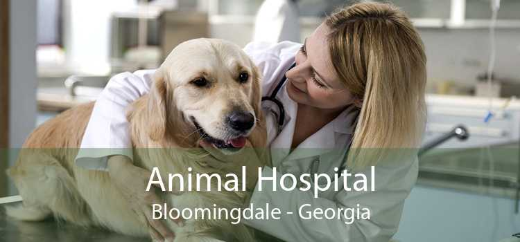 Animal Hospital Bloomingdale - Georgia