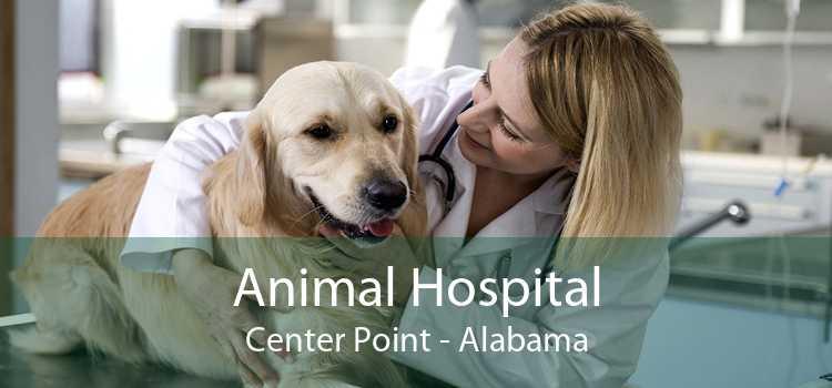 Animal Hospital Center Point - Alabama