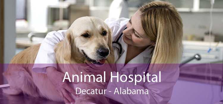 Animal Hospital Decatur - Alabama