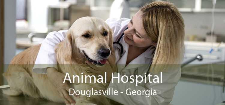 Animal Hospital Douglasville - Georgia