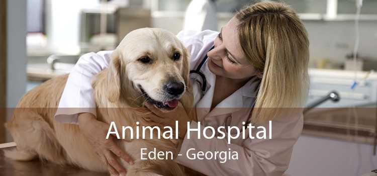 Animal Hospital Eden - Georgia