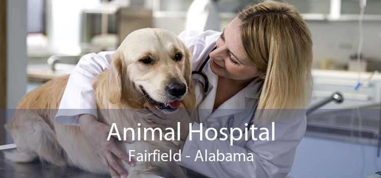 Animal Hospital Fairfield - Alabama