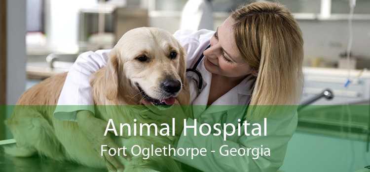 Animal Hospital Fort Oglethorpe - Georgia