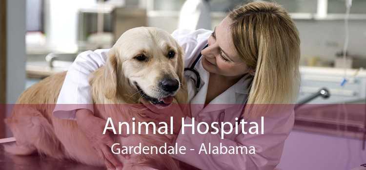 Animal Hospital Gardendale - Alabama