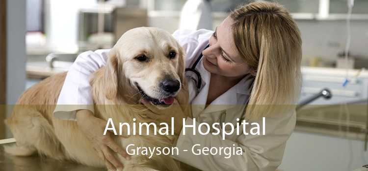 Animal Hospital Grayson - Georgia