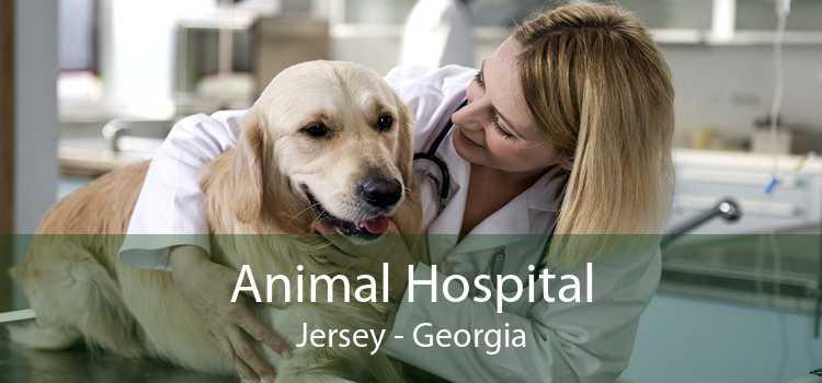 Animal Hospital Jersey - Georgia