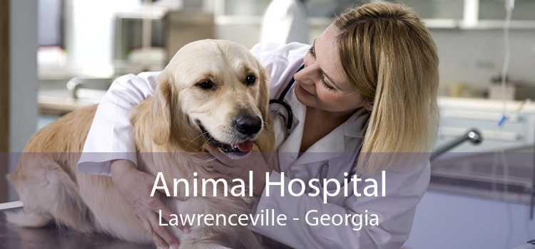 Animal Hospital Lawrenceville - Georgia