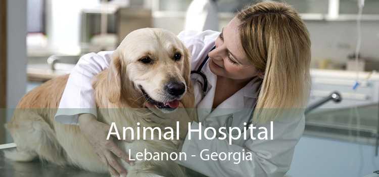 Animal Hospital Lebanon - Georgia