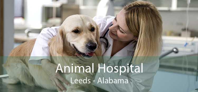 Animal Hospital Leeds - Alabama