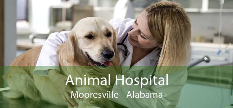Animal Hospital Mooresville - Alabama