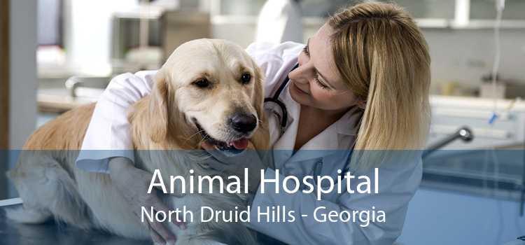 Animal Hospital North Druid Hills - Georgia