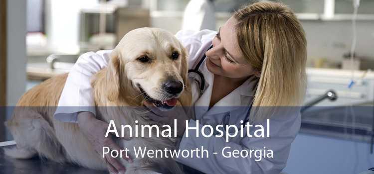 Animal Hospital Port Wentworth - Georgia