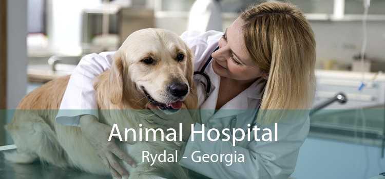 Animal Hospital Rydal - Georgia