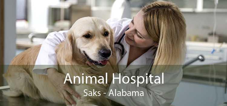Animal Hospital Saks - Alabama