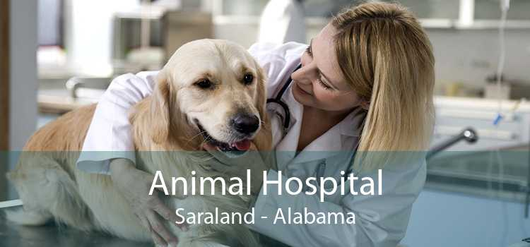 Animal Hospital Saraland - Alabama