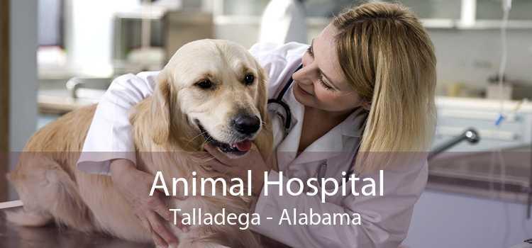 Animal Hospital Talladega - Alabama