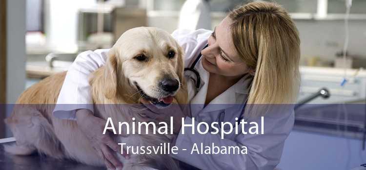 Animal Hospital Trussville - Alabama