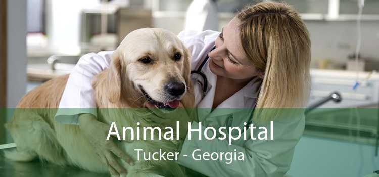 Animal Hospital Tucker - Georgia