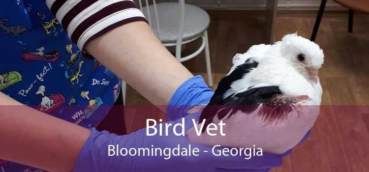 Bird Vet Bloomingdale - Georgia