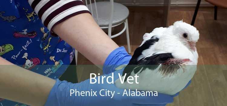 Bird Vet Phenix City - Alabama