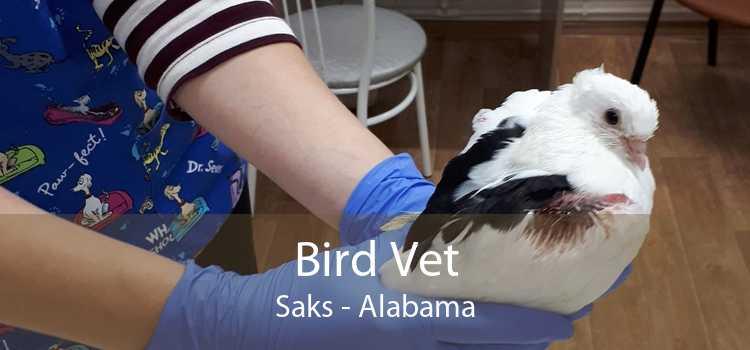 Bird Vet Saks - Alabama