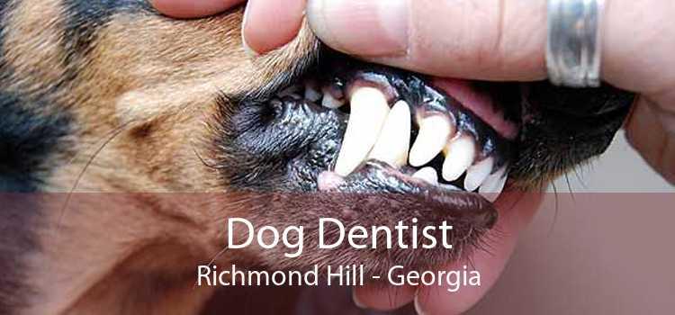 Dog Dentist Richmond Hill - Georgia