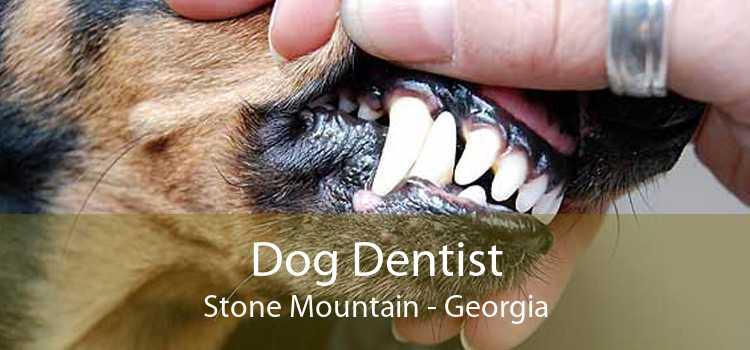 Dog Dentist Stone Mountain - Georgia