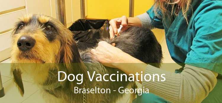 Dog Vaccinations Braselton - Georgia