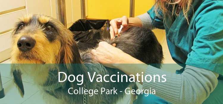 Dog Vaccinations College Park - Georgia