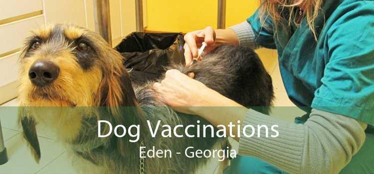 Dog Vaccinations Eden - Georgia