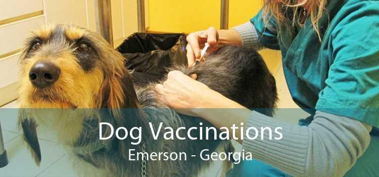 Dog Vaccinations Emerson - Georgia