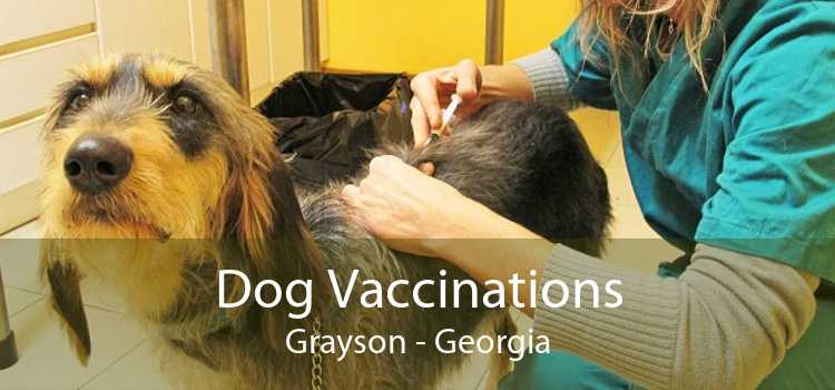 Dog Vaccinations Grayson - Georgia