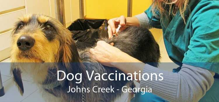 Dog Vaccinations Johns Creek - Georgia