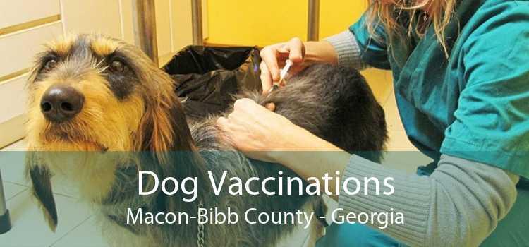 Dog Vaccinations Macon-Bibb County - Georgia