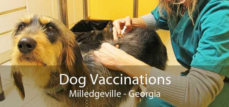 Dog Vaccinations Milledgeville - Georgia