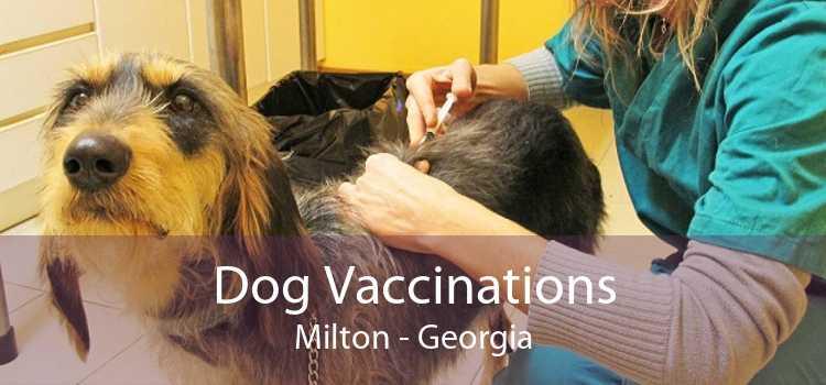 Dog Vaccinations Milton - Georgia