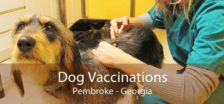 Dog Vaccinations Pembroke - Georgia
