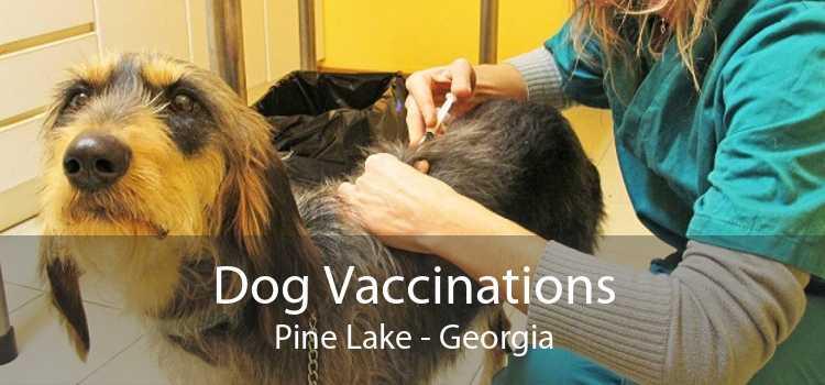 Dog Vaccinations Pine Lake - Georgia