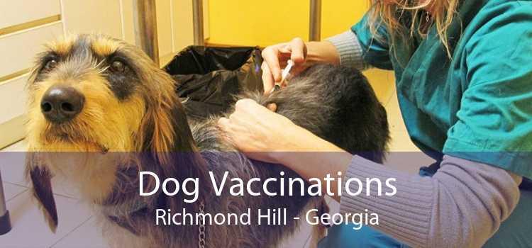 Dog Vaccinations Richmond Hill - Georgia