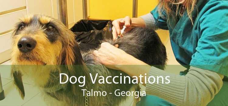 Dog Vaccinations Talmo - Georgia