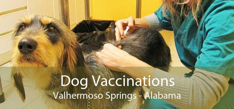 Dog Vaccinations Valhermoso Springs - Alabama
