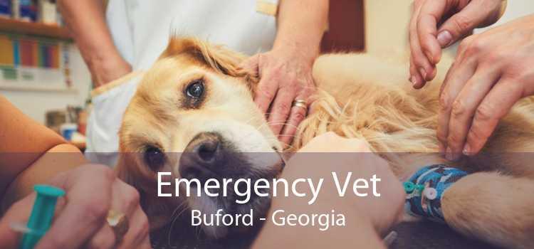 Emergency Vet Buford - Georgia