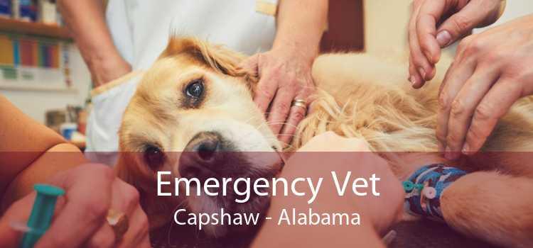 Emergency Vet Capshaw - Alabama