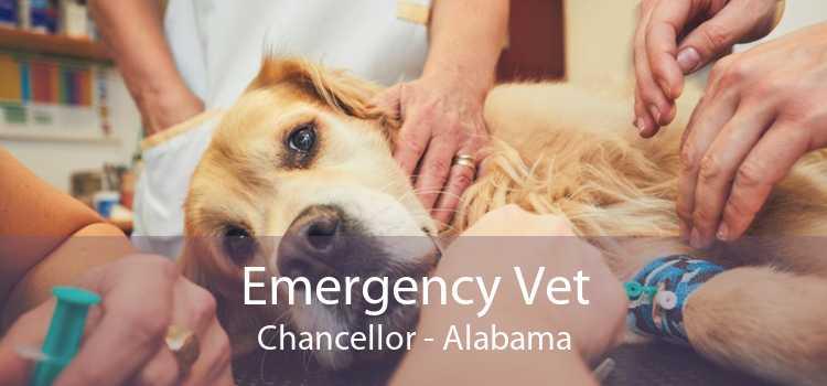 Emergency Vet Chancellor - Alabama