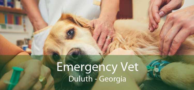 Emergency Vet Duluth - Georgia